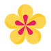icons8-spa-flower-144